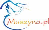 Muszyna Logo Kolor